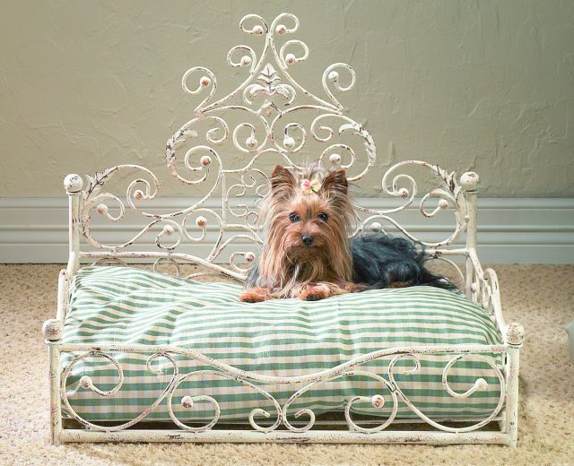 Pet Bed - Antique Scroll