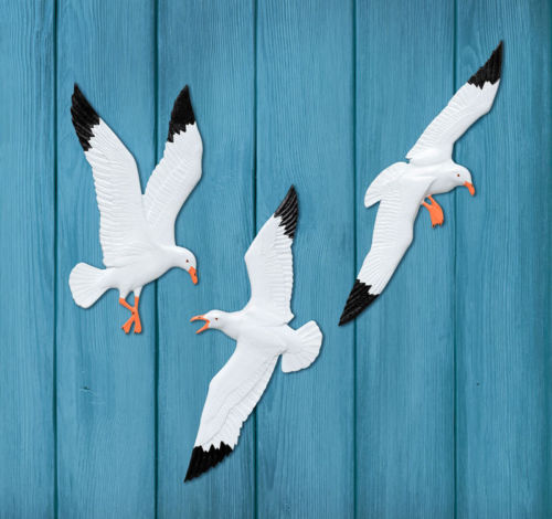 Seagull Bird Set of 3 Plaque Outdoor Safe